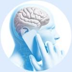 Сотовый телефон и клетки мозга