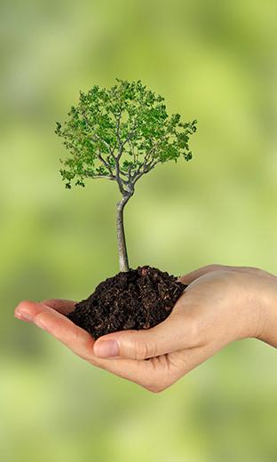 Общие вопросы по экологии предприятия