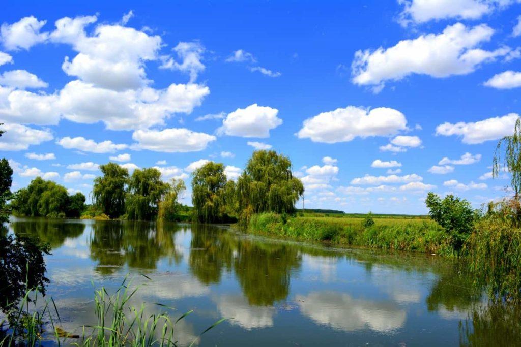 Охрана и использование водных ресурсов