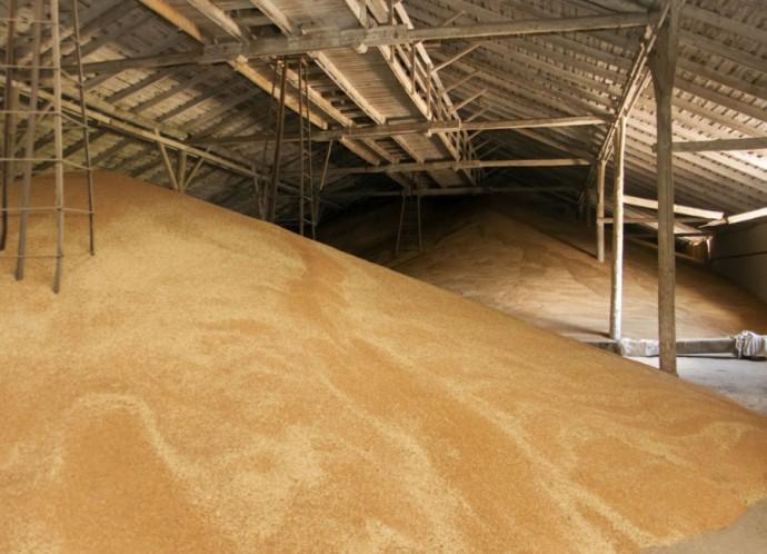 птм зернохранилище