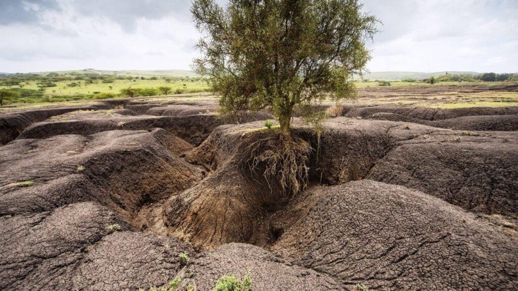 эрозия почв